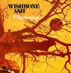 Wishboneashpilgrimage227757